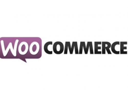Woocommerce – Avis & Présentation