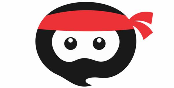 SEO Hero Ninja